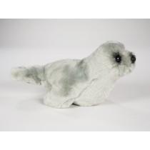 Mediterranean Monk Seal Pup 2677 by Piutrè