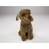 ​Miniature Schnauzer Puppy 3358 by Piutrè