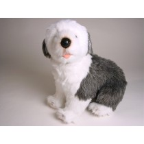 Old English Sheepdog Puppy 3295 by Piutrè