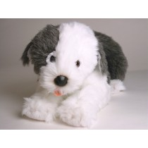 Old English Sheepdog Puppy 3296 by Piutrè
