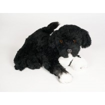 Portuguese Water Dog Puppy 4227 by Piutrè