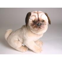 Pug Puppy 2249 by Piutrè