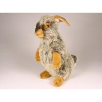 Rabbit 0630 by Piutrè