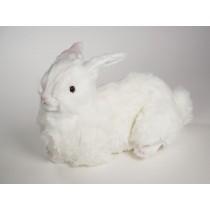 Rabbit 0631 by Piutrè
