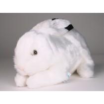 Rabbit 0710 by Piutrè