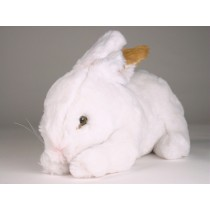 Rabbit 0711 by Piutrè