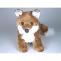 Red Fox Cub 2698 by Piutrè