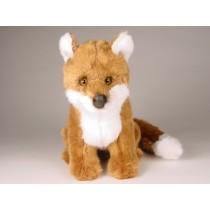Red Fox Cub 2699 by Piutrè
