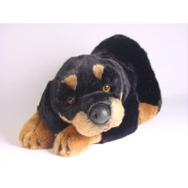 Rottweiler Puppy 2260 by Piutrè