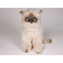 ​Seal Point Himalayan Cat 2366 by Piutrè