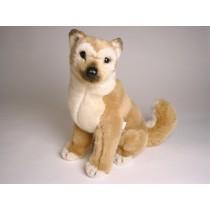 Shiba Inu Puppy 1248 by Piutrè