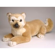 Shiba Inu Puppy 1249 by Piutrè