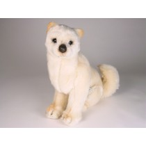 Shiba Inu Puppy 3368 by Piutrè