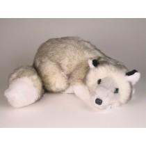 Silver Fox Cub 2660 by Piutrè