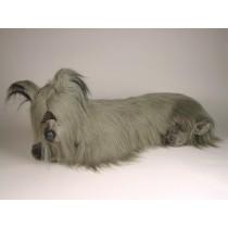 Skye Terrier 1267 by Piutrè
