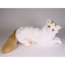 Turkish Van Cat 2317 by Piutrè