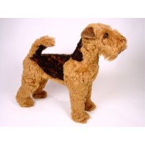 Welsh Terrier 1235 by Piutrè