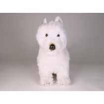 West Highland White Terrier 2275 by Piutrè