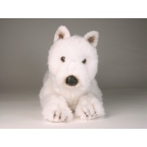 West Highland White Terrier 2276 by Piutrè