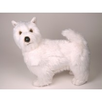 West Highland White Terrier 2277 by Piutrè