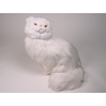 White Persian Cat 0311 by Piutrè