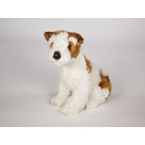 Wire Fox Terrier Puppy 3235 by Piutrè