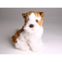 Wire Fox Terrier Puppy 1300 by Piutrè