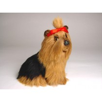 Yorkshire Terrier Puppy 1301 by Piutrè