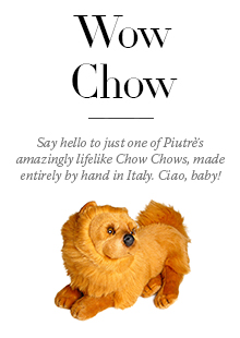 Chow Chow Promo Block